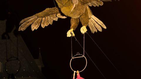 Águila Sofía (10)