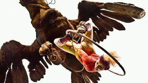 Águila Sofía (4)