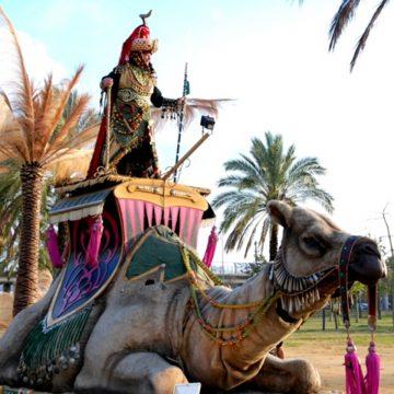 carroza de camella nana