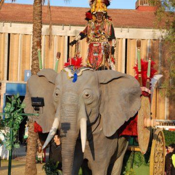 carroza de elefantes para desfilar