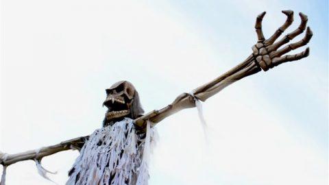 pirata gigante para espectáculos
