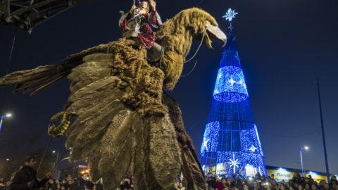 Aguila Sofía en Desfile