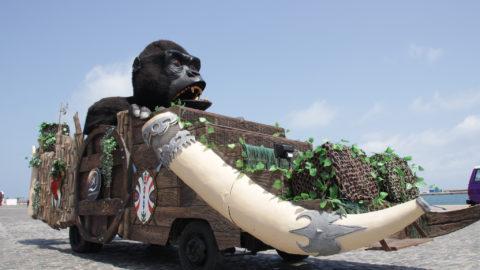 carroza-gorila